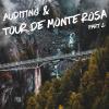 Auditing and the Tour De Monte Rosa   Part #2