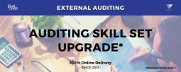 Auditing Skill Set Upgrade